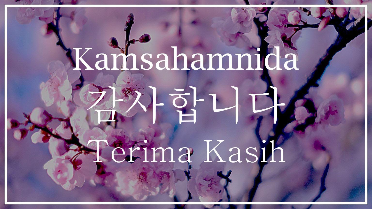 Arti Kamsahamnida