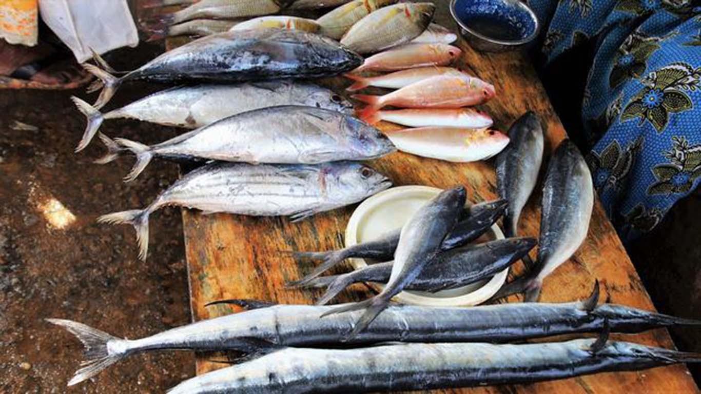 Manfaat Laut Bagi Manusia di Bidang Ekonomi